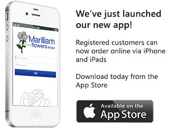 order online via our new app!
